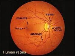 eye-testimg2