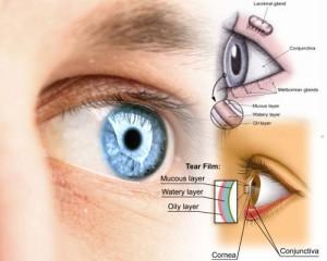 dry eye eye